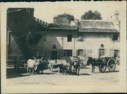Italia, Roma. La Campagna, 1908  Vintage silver print. Photo par Mme Jeanne…