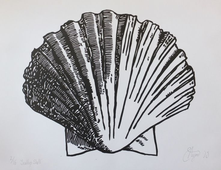 Scallop Shell Lino (Print print run of 16), Linocut by Susannah Ayre | Artfinder