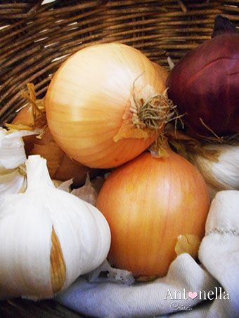antonella-crisci-kitchen-accessories-8-blog