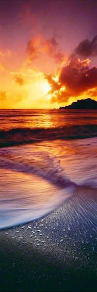Peaceful. Here, waves do not crash. They skim across the ocean's surface, softly colliding to create a calming sensation. A golden sun looms above the horizon, seeming to light the water on fire.