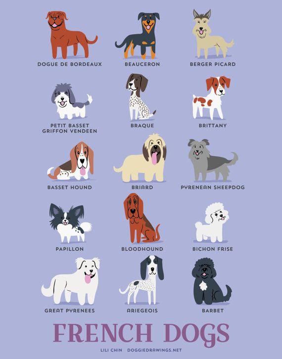 Hond rassen afdrukken: Franse honden kunst door doggiedrawings