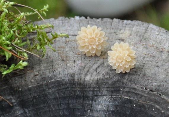 sweet honeycomb dahlia studs