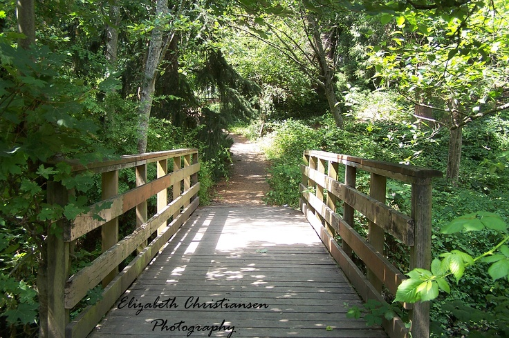 This bridge is at a park in Oregon that I went to with my family for a family reunion :)