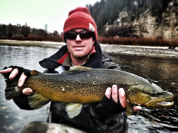 1000 images about south fork of the snake river idaho on for South fork snake river fishing report