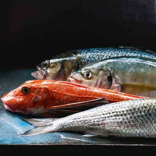 What to do with fish