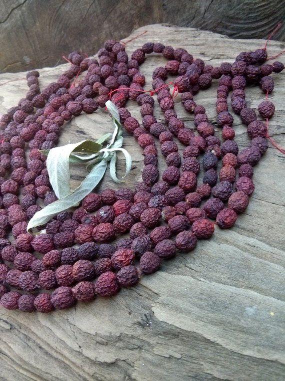 red rowan berries dried rowan berries 50 by Pineneedlesweetgrass, $7.00