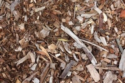 Using Organic Mulch In Gardens - Types Of Natural Mulch