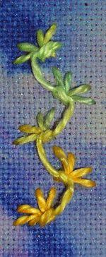 Butterfly Chain Stitch. Such a beautiful stitch!