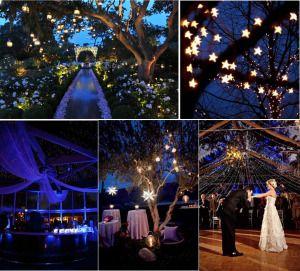 starry night theme wedding venues UK
