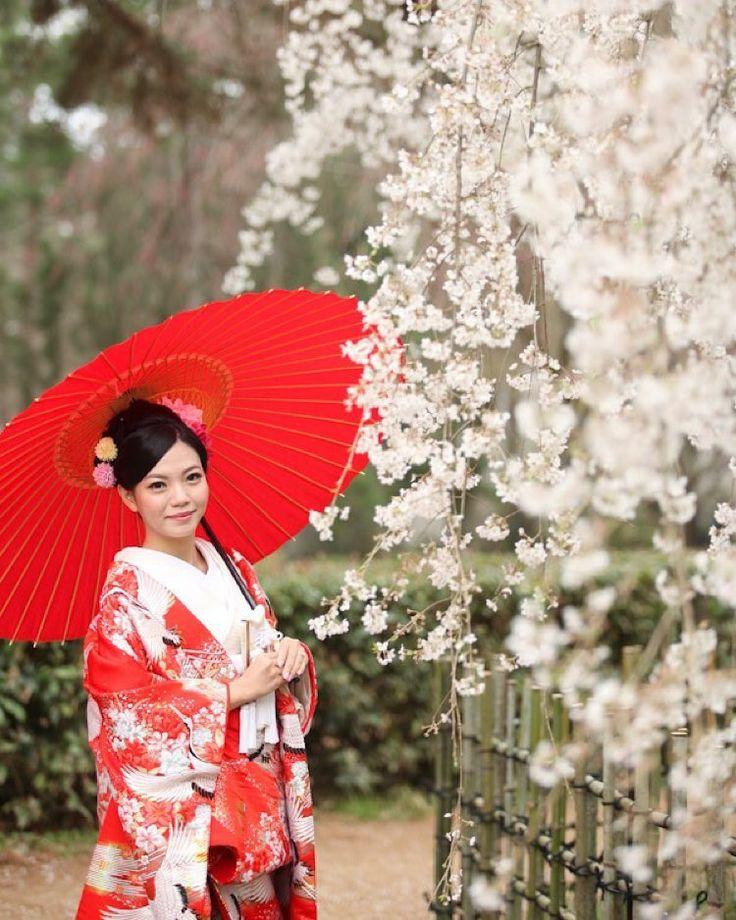 京都日和。http://kyoto-maedori.com/  京都で前撮りをしております。ご興味のある方は是非HPにお越しください♪  #wedding #bridal #marriage #maedori #kimono #shiromuku #japan #kyoto #flower #temple #love #happy #smile #memorial #cherryblossoms  #結婚 #京都 #前撮り #花嫁 #着物 #色打掛 #白無垢 #結婚式 #和装 #袴 #記念 #愛 #桜 #笑顔 #家族