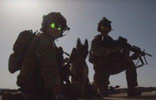 Sweden's Elite Coastal Rangers In Action