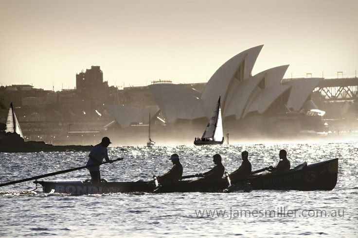 Sydney Rowers on the Harbour