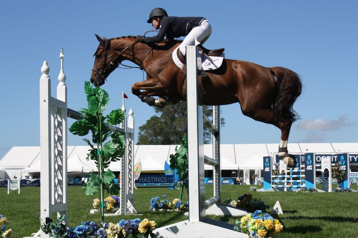 Jumping action from the Norwood Gold Cup today