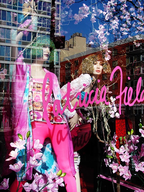 Beautiful Window Displays!: patricia field store in NYC
