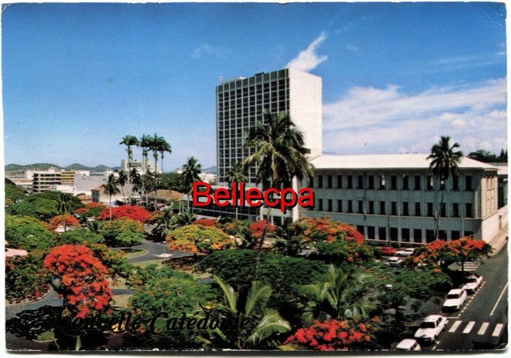Nouvelle Caledonie Noumea Place DES Cocotiers Floraison DES Flamboyants 1979 | eBay