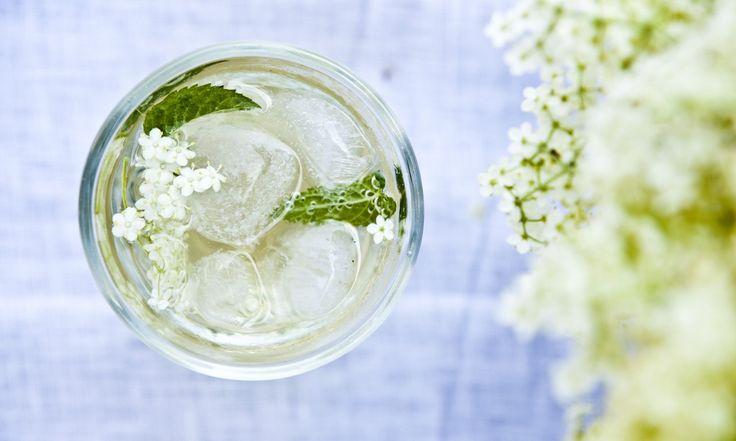 Sirup z bezinkových květů | KITCHENETTE