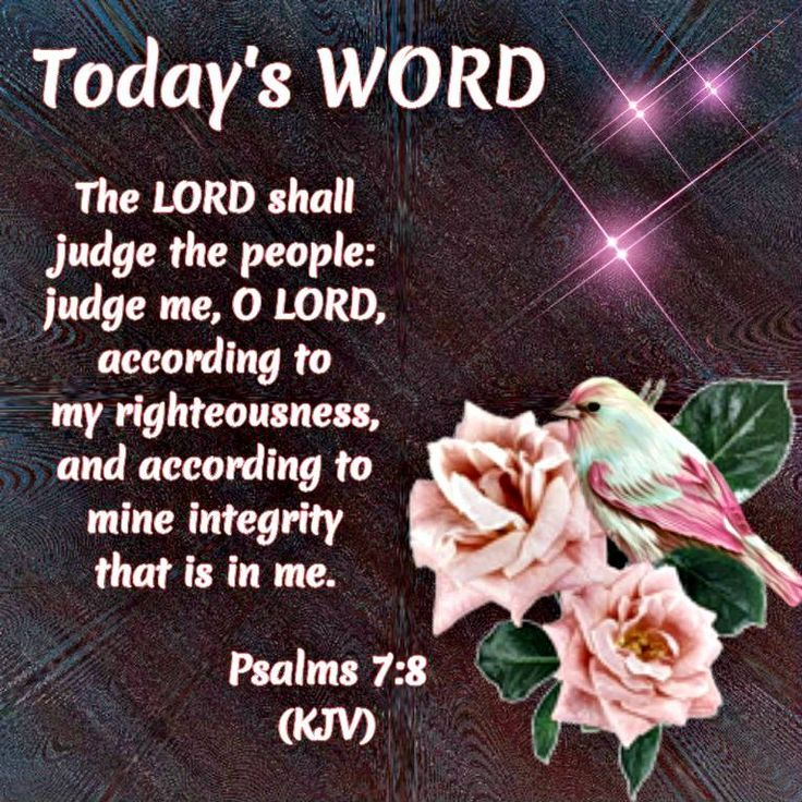 Today's Word: Psalm 7:8