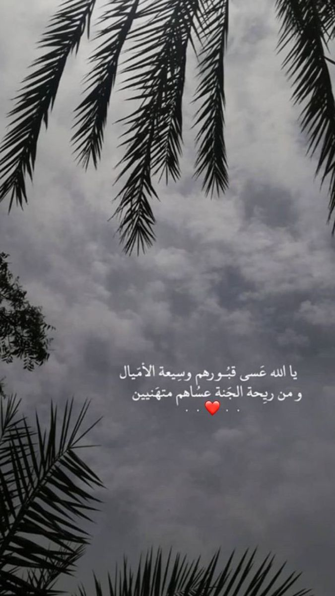 Pin By فتاه لطيفه On اشعار وحركات Iphone Wallpaper Quotes Love Quotes For Book Lovers Quran Quotes Love