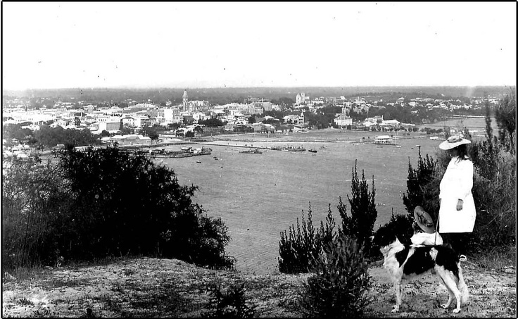 Perth city view from King's Park 1900s