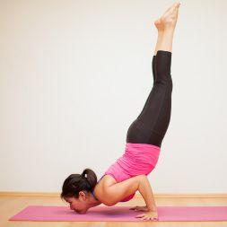 health-and-fitness-flexibility-calisthenics-and-plyometrics