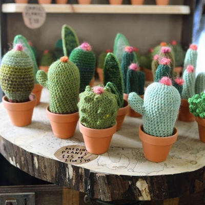 Crocheted Cacti and Succulents