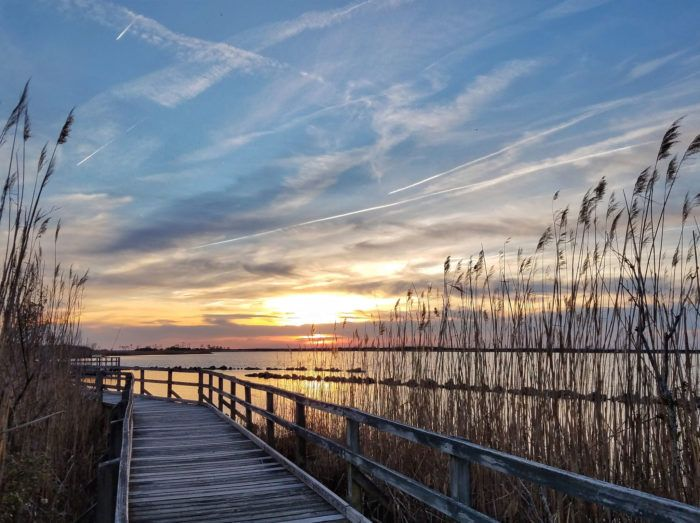 As the boardwalk meanders through the sandy terrain, you'll catch unforgettable glimpses of the oceanfront.