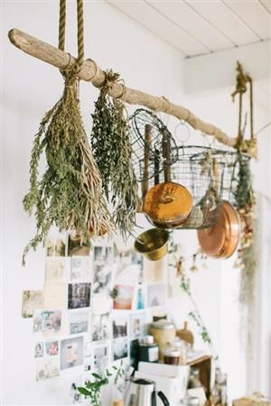 KITCHEN PARTY! Project Idea: Rustic Driftwood Pot Rack.   I want to use it to dry peppers!