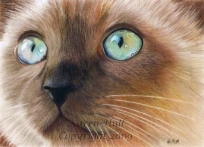 """Karen Hull Art """"Turquoise Eyes"""""""