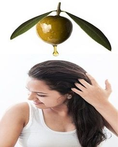 Health N Fitness Expert - Health tips, fitness tips, nutrition, gym : Olive Oil For Hair Growth Beauty Tips For Women
