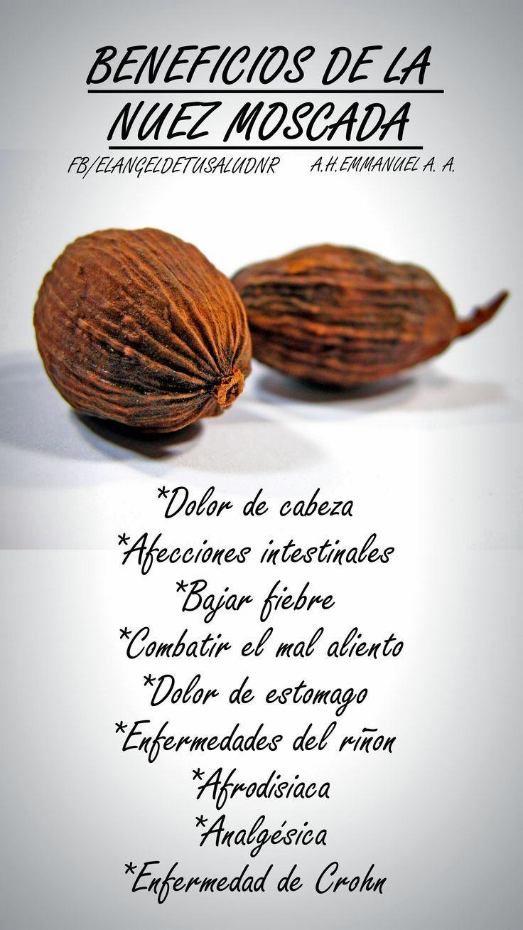 Nuez Moscada Nuez Beneficios Salud Bienestar Medicinal Plantasmedicinales Alternati Recetas Para La Salud Beneficios De Alimentos Remedios Para La Salud