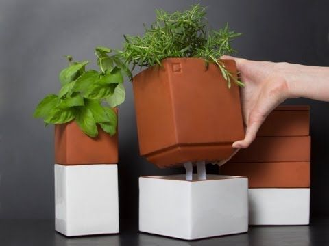 Self Watering Planters from Cult Kitchen Farming, The Grommet