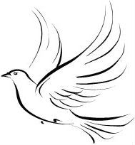 best 25 dove tattoo design ideas on pinterest peace dove tattoos sparrow tattoo shoulder and. Black Bedroom Furniture Sets. Home Design Ideas