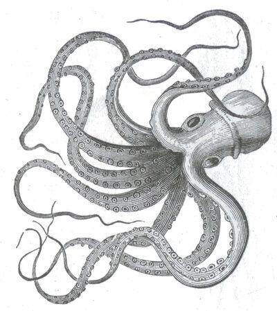 Vintage nautical steampunk octopus kraken sea monster steampunk drawing Art Print
