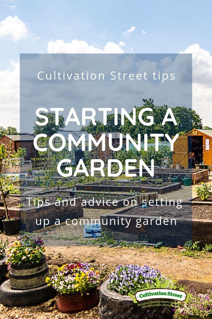 Top Tips On Starting A Community Garden Garden Photos Garden
