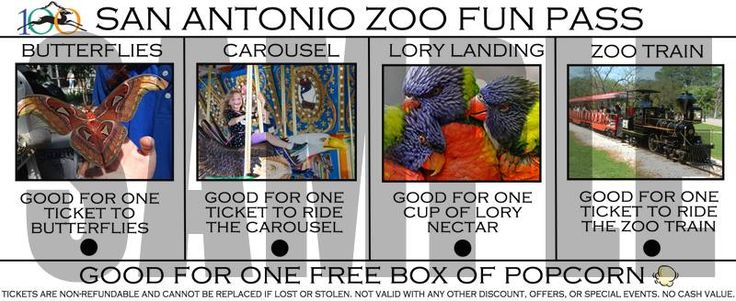 """Kidcation Week August 8 - 12 at YOUR San Antonio Zoo!  During Kidcation Week, just mention """"Kidcation Week"""" to the cashiers and your child or children, ages 3 - 11, will receive half-off Zoo admission. And, don't forget to purchase your Zoo Fun Pass for only $9.00 per person. Enjoy a carousel ride, lory landing, butterflies and a train ride. With your Zoo Fun Pass http://www.pinterest.com/TakeCouponss/san-antonio-zoo-coupons/"""