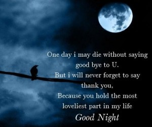 Sad Good Night Messages in Hindi  Sad Hindi good night sms messages text  http://urdumix.blogspot.com/2013/01/sad-good-night-messages-in-hindi.html