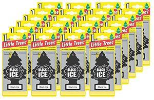 3. Car Freshener Little Tree Air Freshener