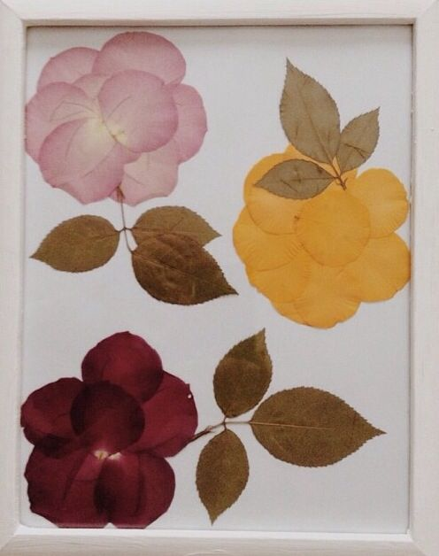 1000 ideas about rose petals craft on pinterest dried