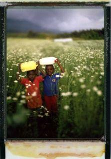 Dare voce e presenza alla memoria dei superstiti del genocidio del Ruanda: con questa ambizione il giornalista documentarista Giordano Cossu (autore di un reportage per l'Espresso) e l'artista e fotografo francese Arno Lafontaine hanno intrapreso tra agosto 2013 e febbraio 2014 un viaggio in Ruanda, incontrando la popolazione a vent'anni di distanza dal massacro che fece 800.000 vittime in soli tre mesi, nell'indifferenza dell'Occidente. Da allora, il nuovo regime politico ha promosso una…