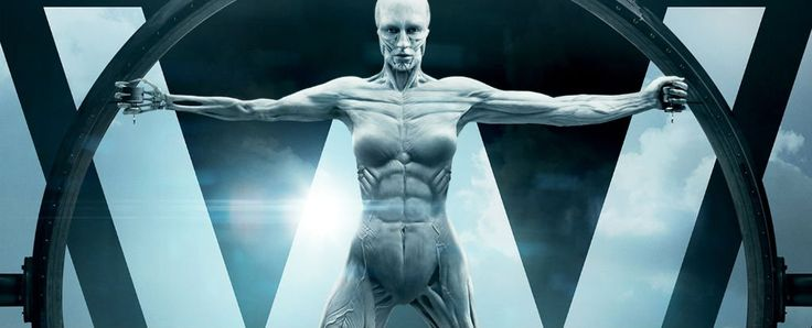 Scientists have developed a new type of artificial muscle fibre based on nylon, which could one day render our future robot companions more realistic than ever.