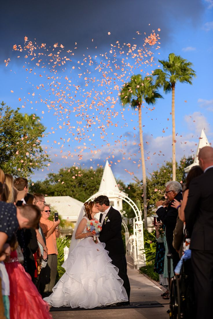 Its Raining Petals Outside Disneys Wedding Pavilion Photo Stephanie Disney Fine Art