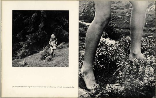 Dream in the Forest, 1957. Photo: Ata Kandó