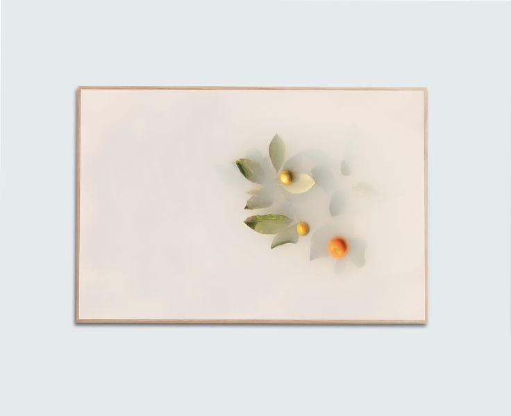 'Kumquat' Limited Edition Print by Artist, Catherine Jensen