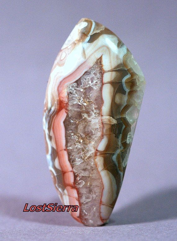 Utah Yellow Cat Mine Jurassic Petrified Redwood Limb Cast with Agate & Amethyst Crystals