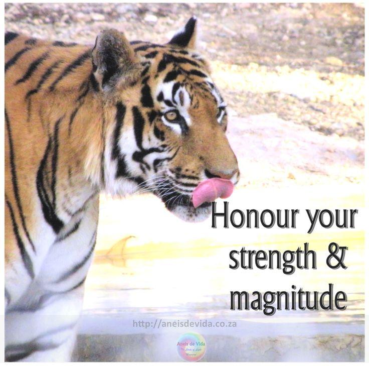 Strength and Magnitude  http://aneisdevida.co.za