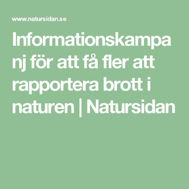 Informationskampanj för att få fler att rapportera brott i naturen | Natursidan