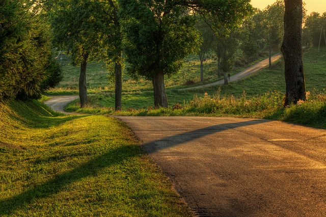 Can I please walk here forever? | The road goes and goes by Wojtek Toman, via Flickr