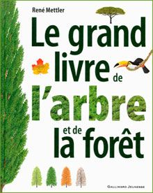 Le grand livre de l'arbre et de la forêt - Carton à desseins