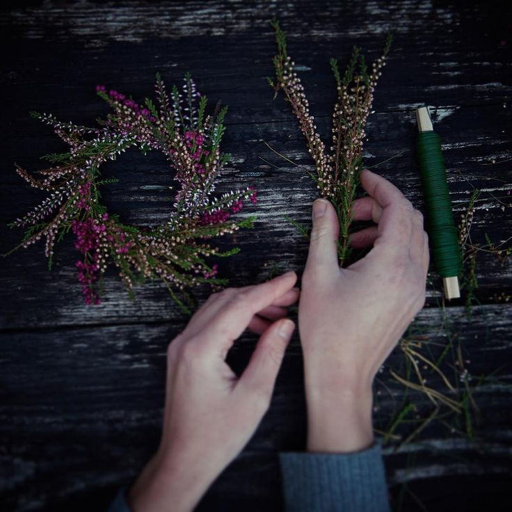One bouquet per day: heather, picked in our garden today and turned into a little wreath (Sve: ljung | De: Heidekraut). Björkåsa, our home, is located in an ancient rural settlement called Ljungarum. In English, Ljungarum means 'heather weald' (and Björkåsa would be something like 'birch hill' - because, you might have guessed it, there are lots of birches and lots of heather where we live ;-) #onebouquetperday #julianesflowerdiary #poppytalkfallcolours
