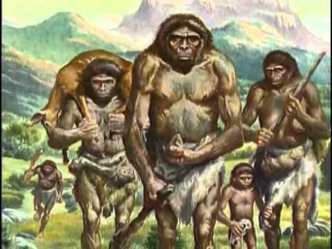 L'évolution de l'homme au fil des années